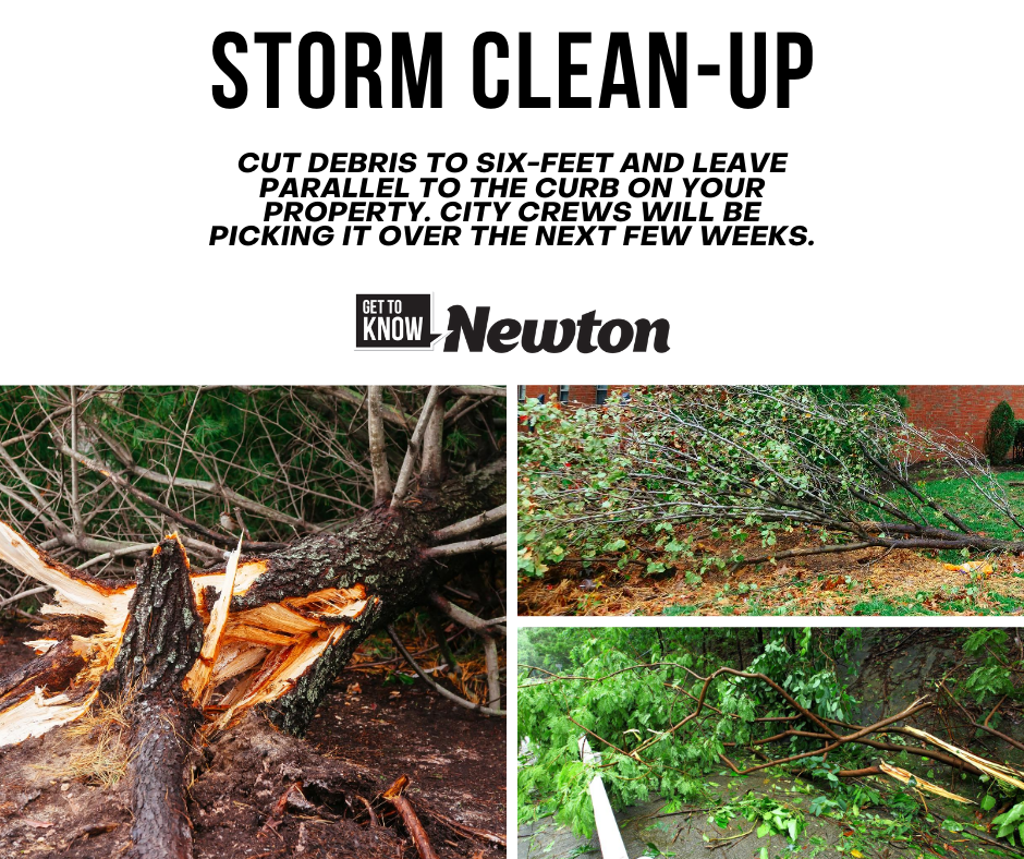 Clean-up Storm Debris