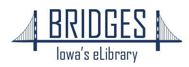 bridges logo Opens in new window