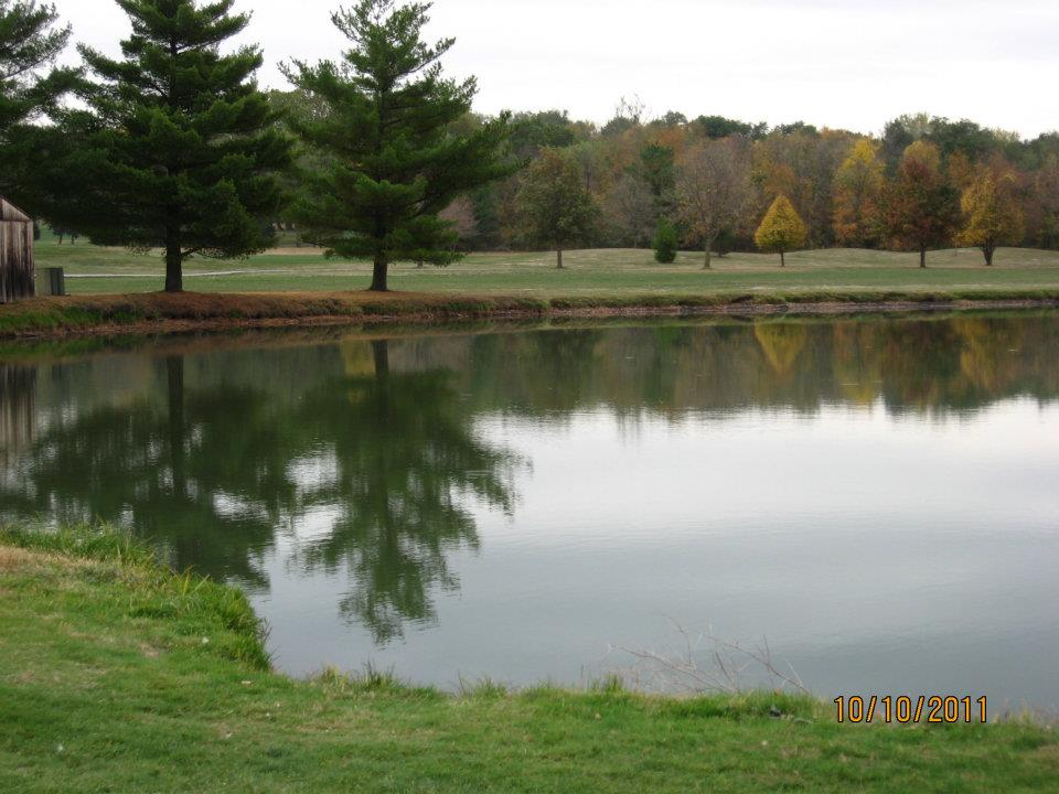 Pond at golf course